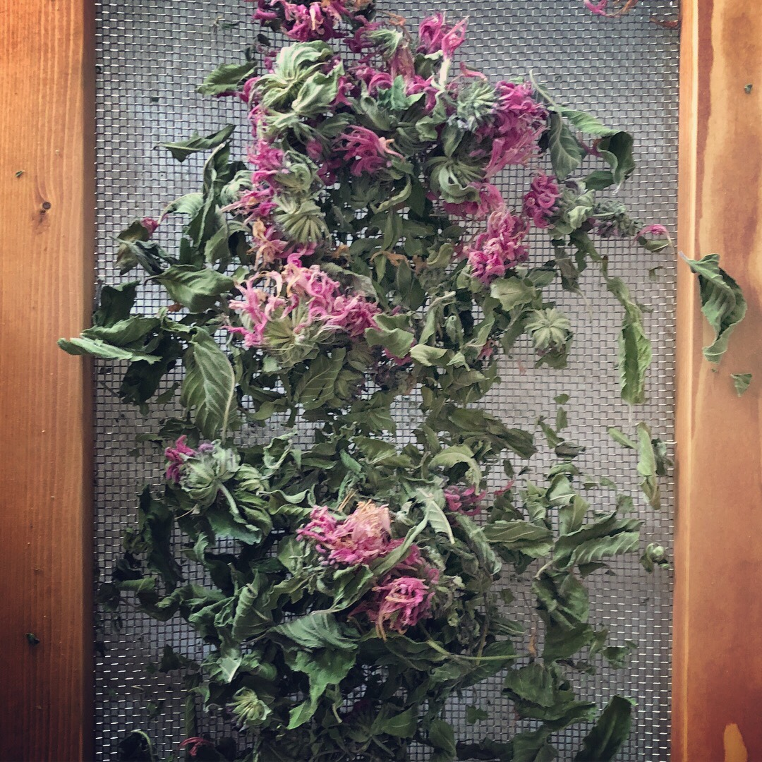 herb screen