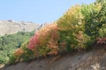 Der Herbst hält Einzug in den Bergen