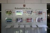 Stationen der Teeherstellung.