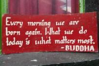Buddhas Lehre taugt mir. Living in the present moment. Weder an Gestern noch an Morgen denken.