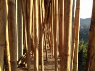 Bambus wird allerorts als Baumaterial eingesetzt oder hier zum Abstützen der Betondecke.