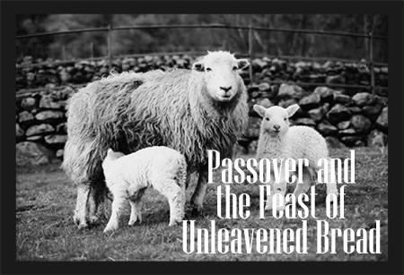 Passover_lamb