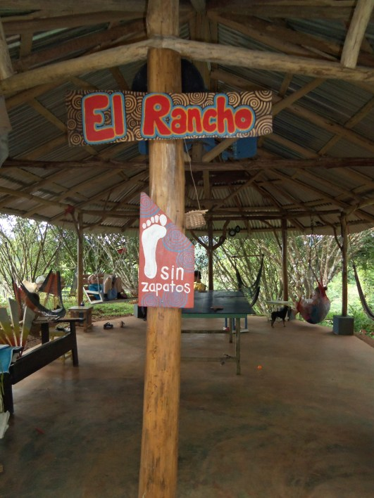 """""""El Rancho"""" the place to hang out. Hammocks, ping pong, paints, music, books..."""