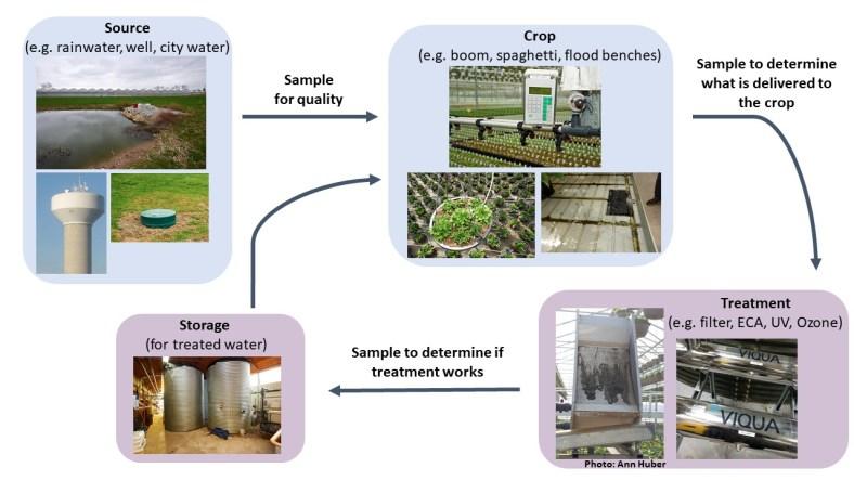 water sampling infographic
