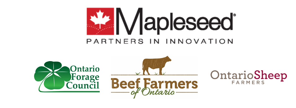 2020 banner for Mapleseed pasture competition