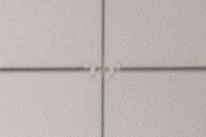 100%-ный кроп периферии с объективом Tokina на 300 мм