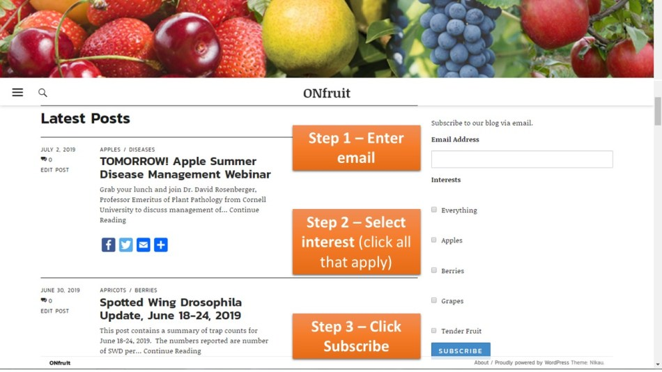 ONfruit_modified subscription_homepage