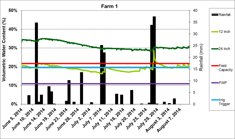 This graph describes the soil moisture readings taken by a probe buried at 12 inches compared to one buried at 24 inches. The x axis has the dates from June 5, 2014 to August 7th, 2014. The y axis represents the volumetric water content, and ranges from 0 to 50 percent. the probe at 24 inches has a range of between 30-40 percent, while the probe at 12 inches has a range around 20 percent, which is also the irrigation trigger. Both measurements fluctuate depending on the amount of rain.
