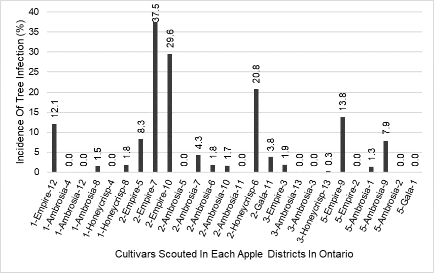 Graph showing Bitter rot disease pressure (incidence) in each apple districts in September-November 2019 in Ontario. The number before the cultivar indicates district and after the cultivar indicates orchard number.