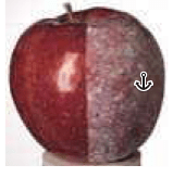 Apple with Kaolin Clay