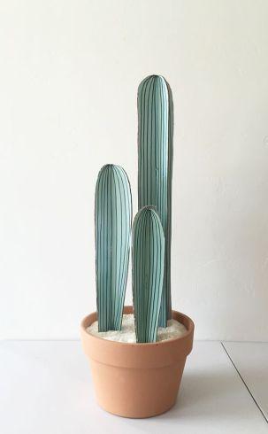 cactus balsahout