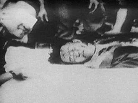 Ngô Đình Nhu (1910-1963): Một Nhà Chiến Lược (6/6)