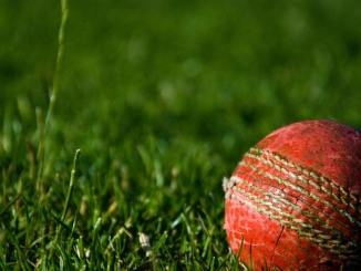 The Reasons Why Online Cricket Betting is Popular in India?