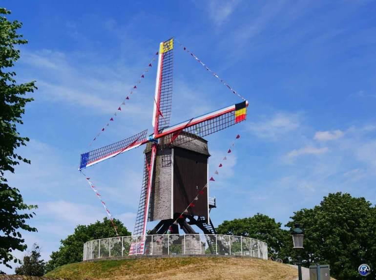 Voir les moulins en visitant Bruges