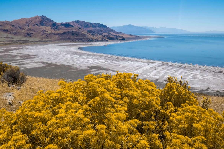 Vue sur le Grand Lac Salé depuis Antelope Island en Utah