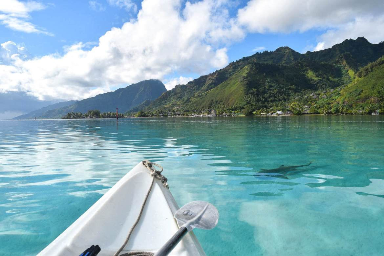 Moorea ile paradisiaque Polynésie française