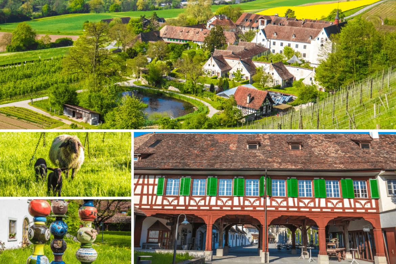 Visiter la Chartreuse d'Ittingen en Thurgovie