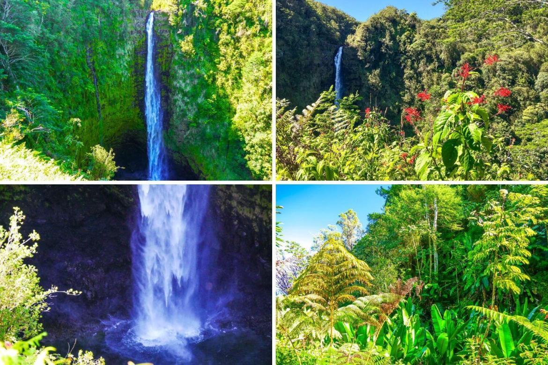 Akaka Falls Big Island