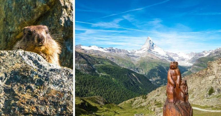 Sentier des marmottes Zermatt week-end romantiques en Valais