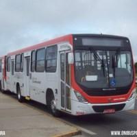 A população campinense é convidada para sugerir nome de APP de ônibus