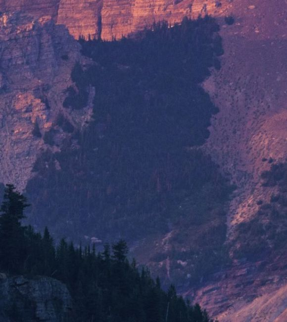Group-of-trees-on-side-of-mountain-resemble-profile-of-Davy-Crockett2