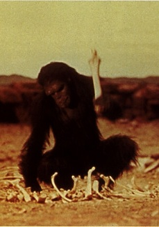 Jungian intuition and Tarot: the Ape