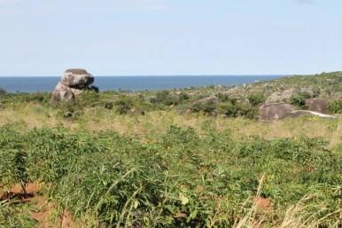 Views of Lake Victoria