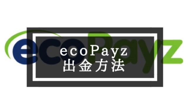 ecopayzの出金方法!実際にかかった手数料も!