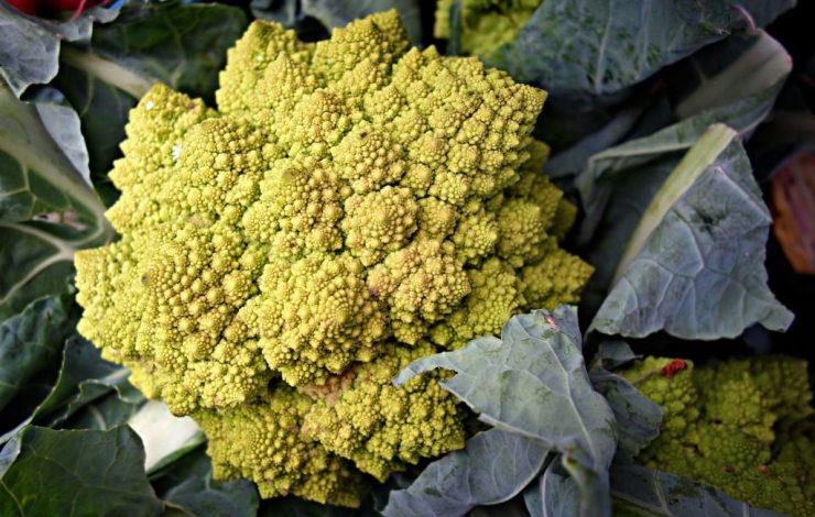 Okrasná zelenina ve vaší zahradě - ozdobí i chutná