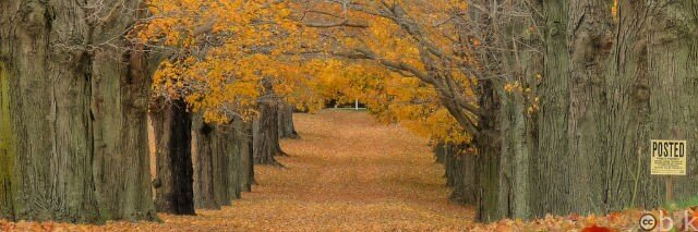 blog post timing like the seasons should be regular