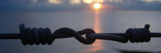 Remembering Eric Ward, Fence Link at Sunset