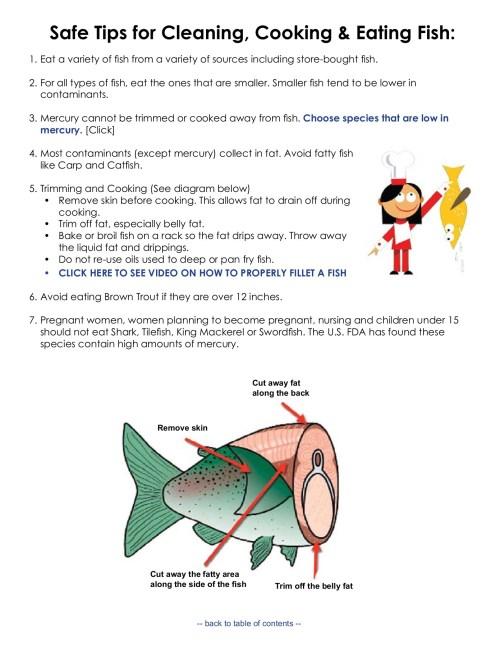 small resolution of fish health diagram