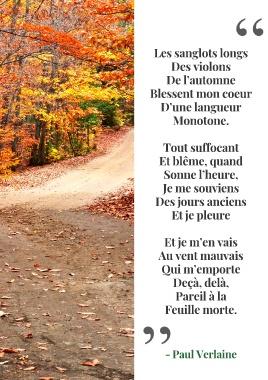 Blesse Mon Coeur D Une Langueur Monotone : blesse, coeur, langueur, monotone, Toluna, Octobre