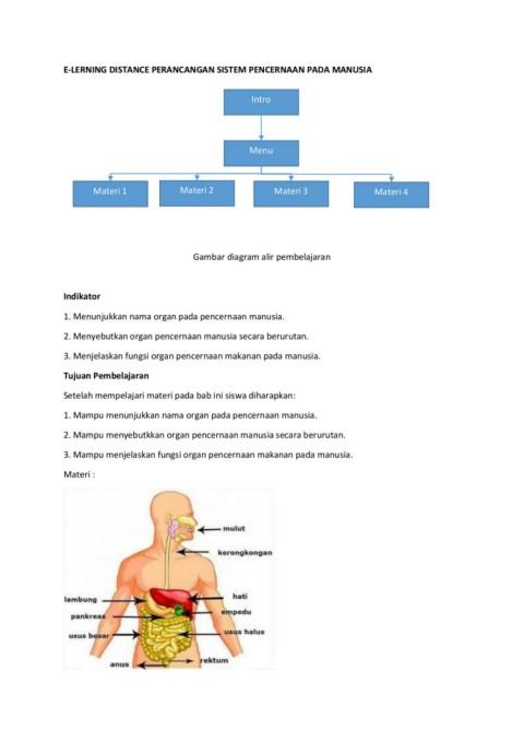 Alat Pencernaan Manusia Secara Berurutan : pencernaan, manusia, secara, berurutan, Time-Flip, EBook, Pages, AnyFlip