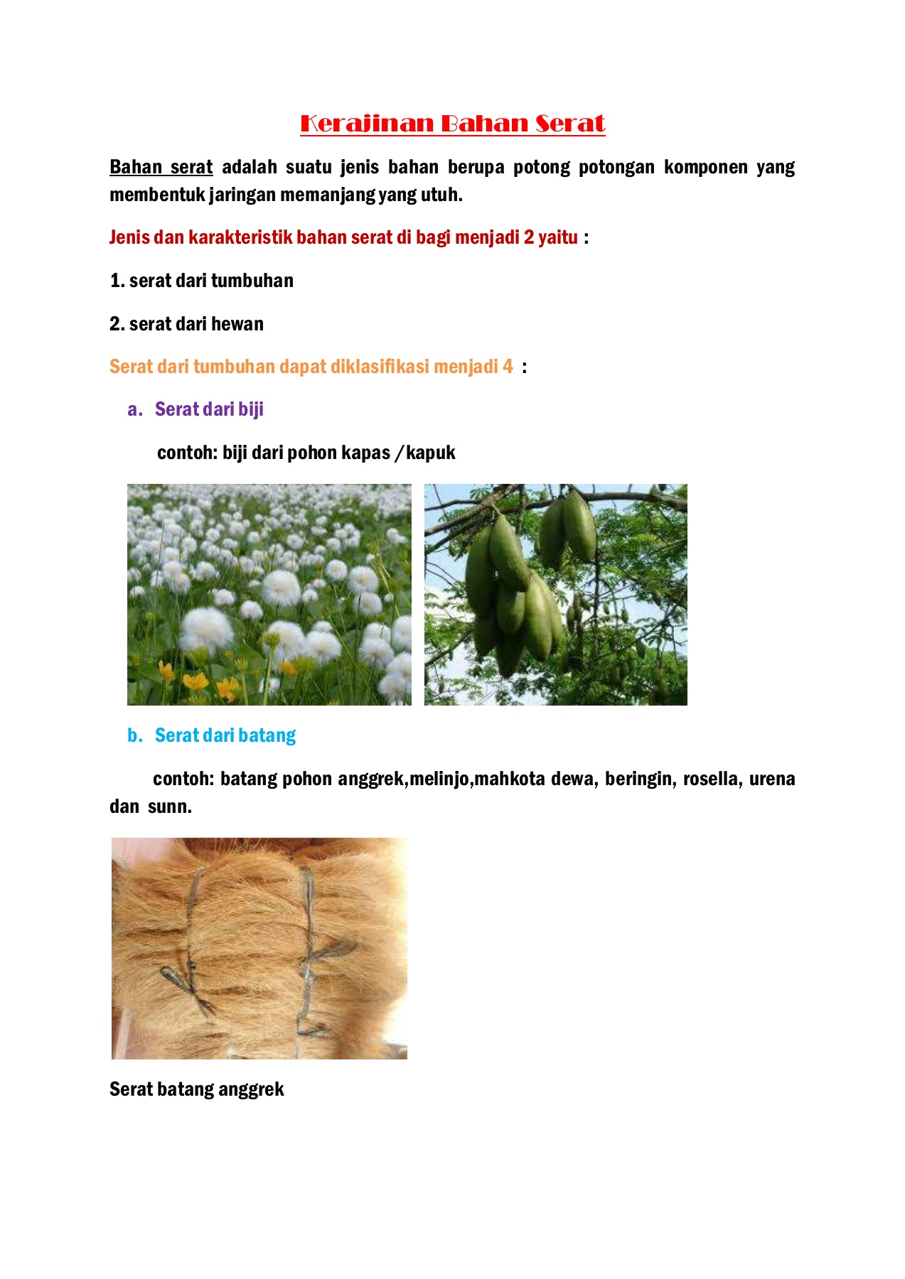 Gambar Serat Batang Anggrek : gambar, serat, batang, anggrek, Ulangan, Harian, I-Flip, EBook, Pages, AnyFlip