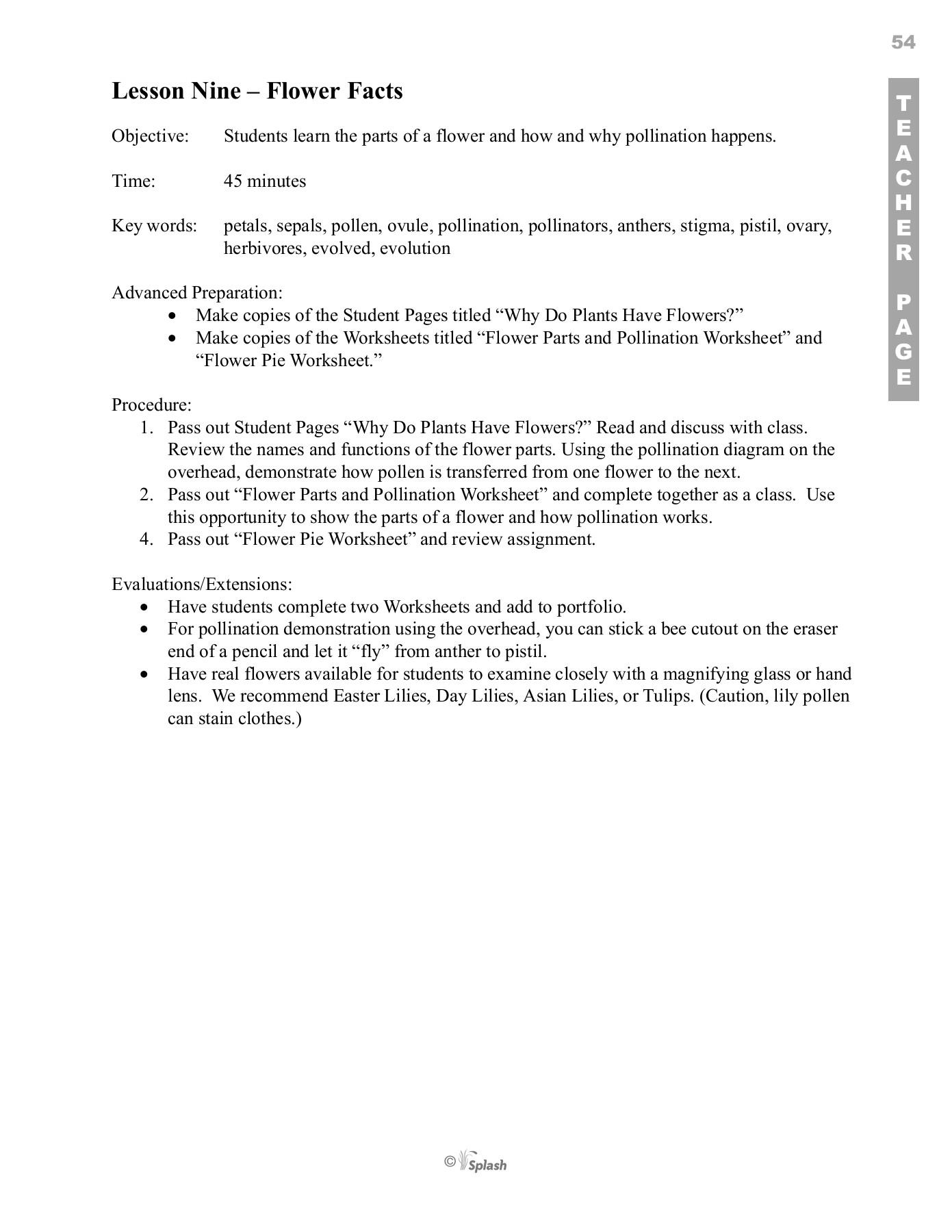 Parts Of Flower Pollination And Fertilization Worksheet