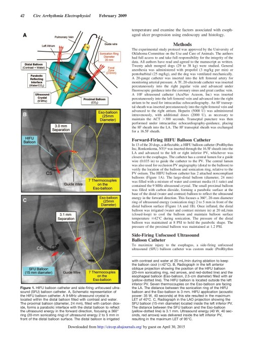 small resolution of canine model of esophageal injury and atrial esophageal pages 1 10 text version fliphtml5