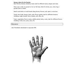 Five Senses in the Garden - Education Outside Pages 1 - 3 - Flip PDF  Download   FlipHTML5 [ 1800 x 1391 Pixel ]