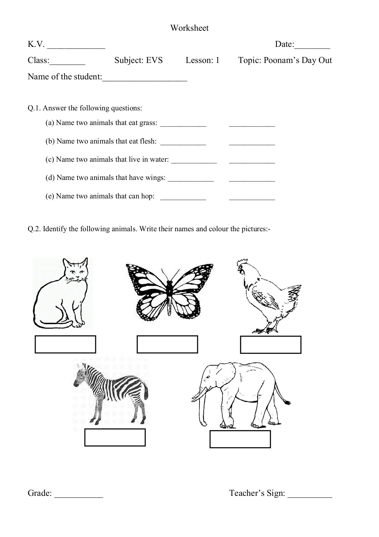 Worksheet For Class 3 Evs