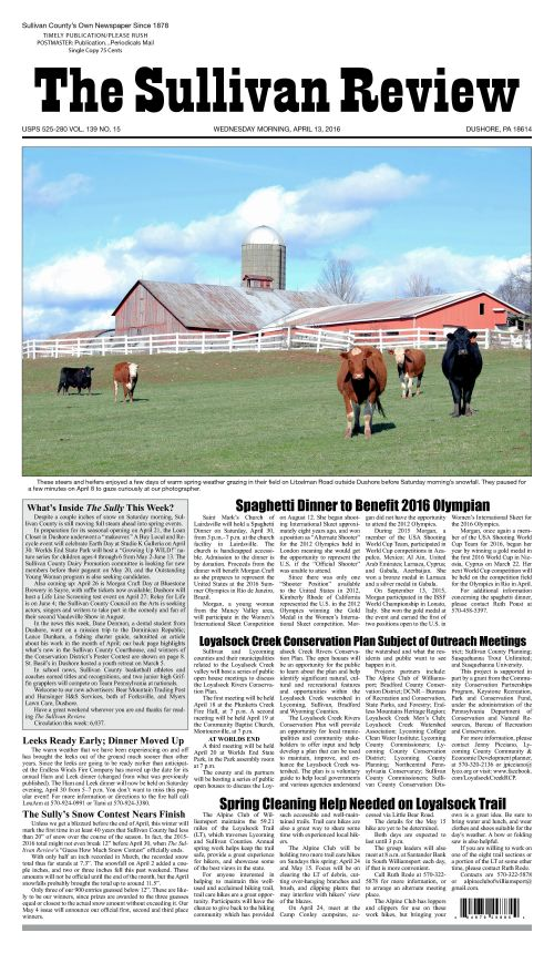 small resolution of the sullivan review april 13 2016 pages 1 18 text version fliphtml5