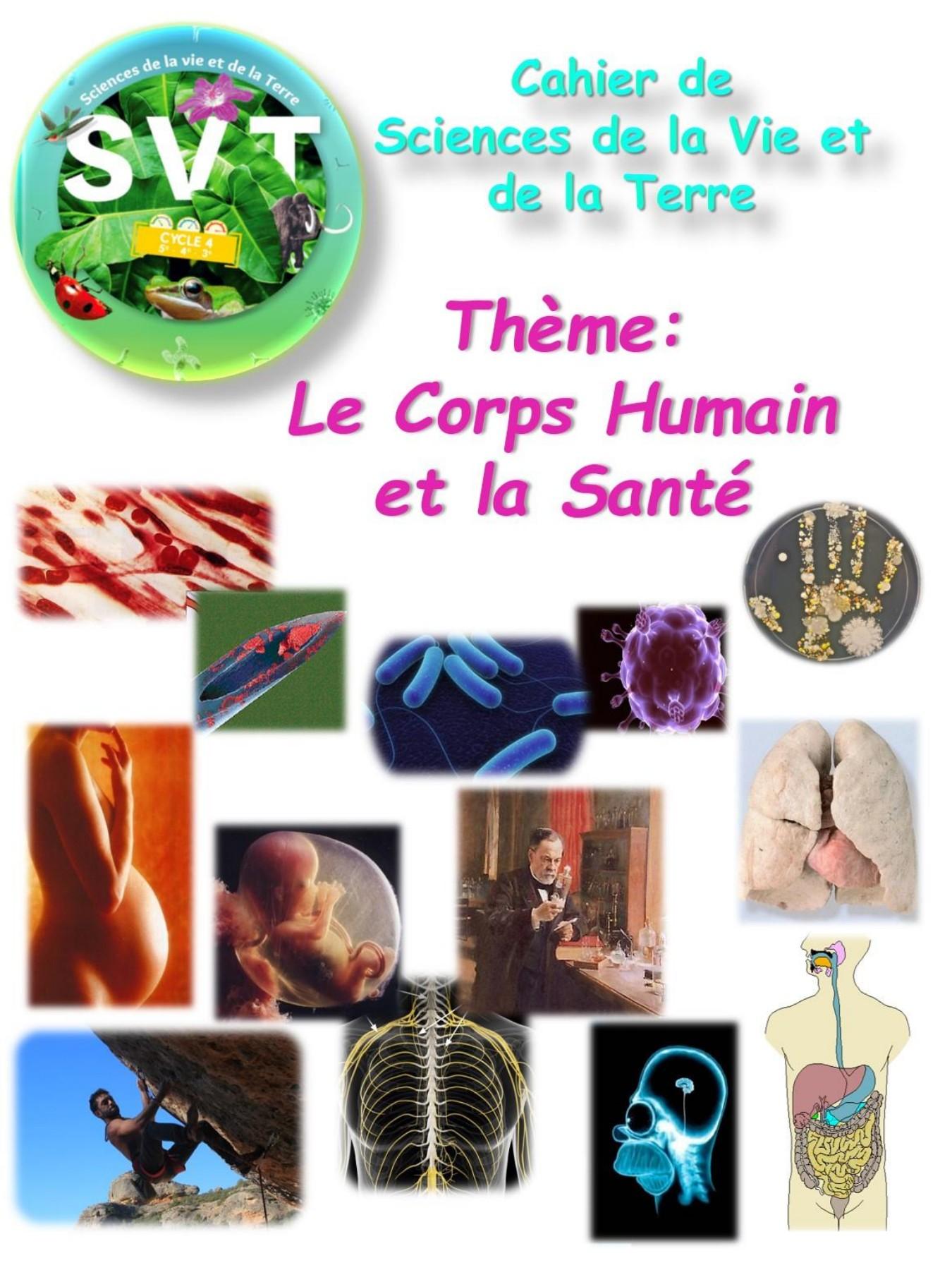 PDF  Le corps humain La santé - Université du Québec