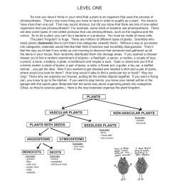 club mos plant diagram [ 1391 x 1800 Pixel ]