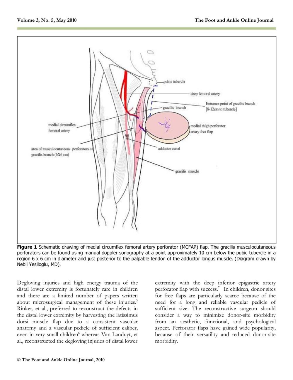 medium resolution of medial circumflex artery flap final wordpress com pages 1 6 text version fliphtml5