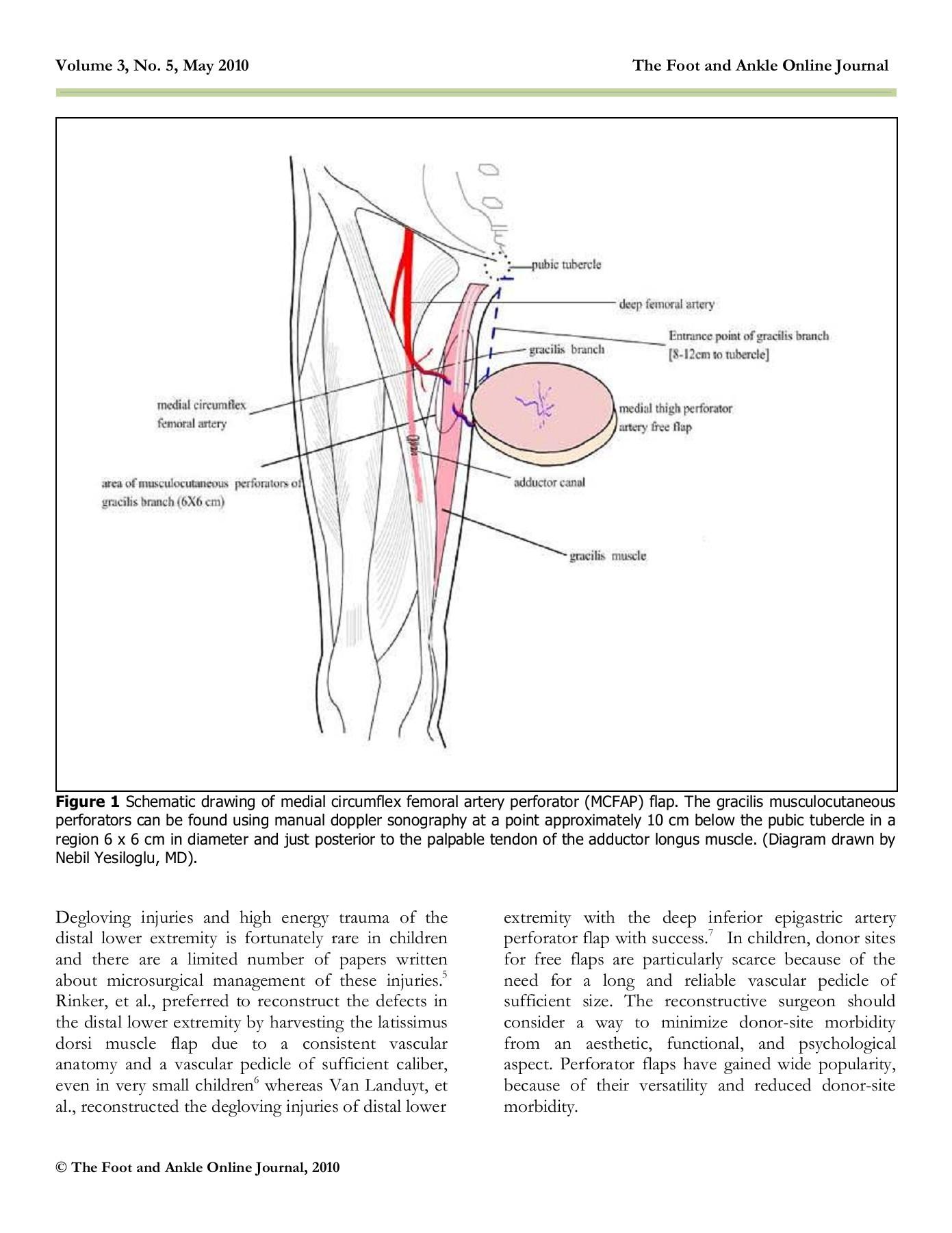 hight resolution of medial circumflex artery flap final wordpress com pages 1 6 text version fliphtml5