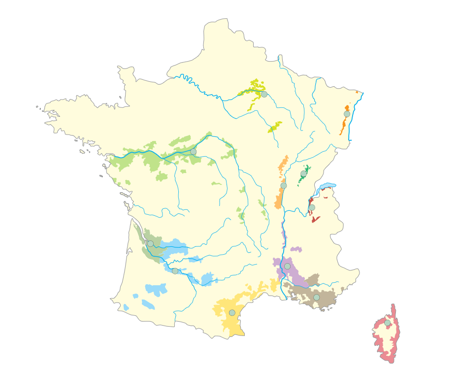 France Wine Regions Map Quiz Game
