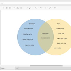 Venn Diagram Creator Vga To Rca Cable Wiring Online Tool Example Mammals And Fish