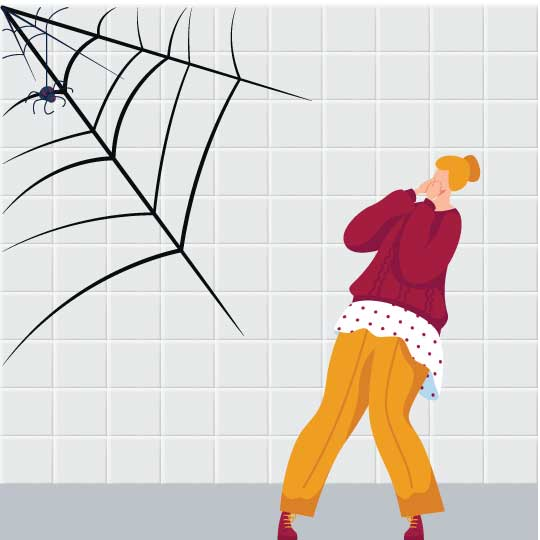 Arachnophobia fear of spiders - GRE Word List