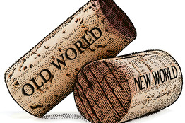 Image result for old world vs new world wine