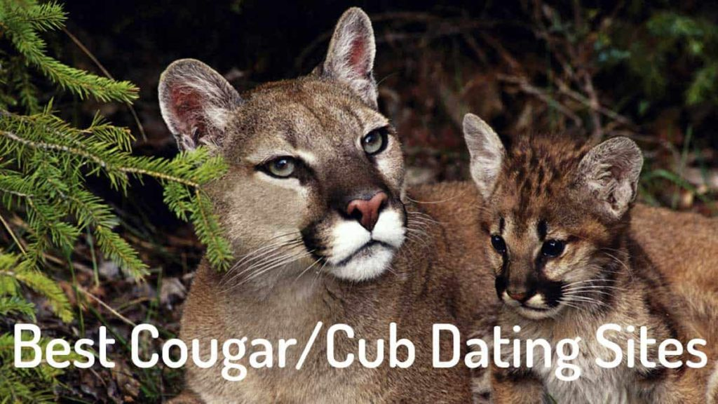 best cougar dating sites
