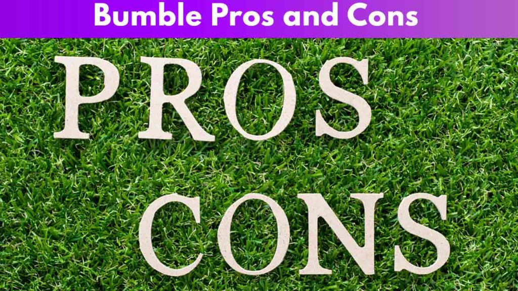 Bumble pros and cons 1